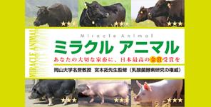 ミラクルアニマル家畜